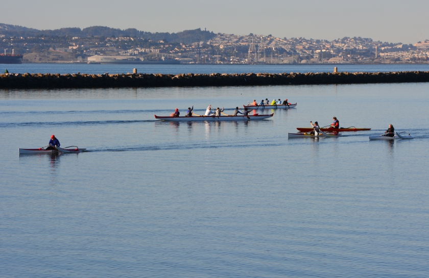 Canoers and kayakers at Alameda Point off Enterprise Park. Looking south/southwest. Launched from Breakwater Beach.