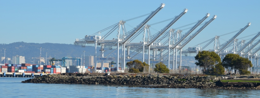 Northwest tip of Alameda Point.  Waste burning area is immediately to the right of trees.  Port of Oakland is in background.