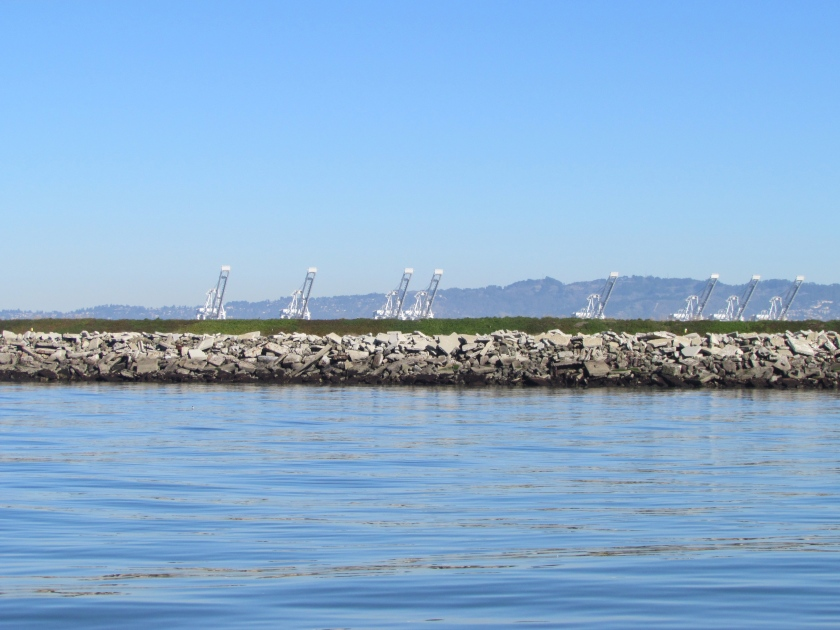 Southwestern shoreline of Alameda Point at Site 2 landfill.  Rock/cement riprap seawall, with green embankment berm above.  Looking north toward Port of Oakland.