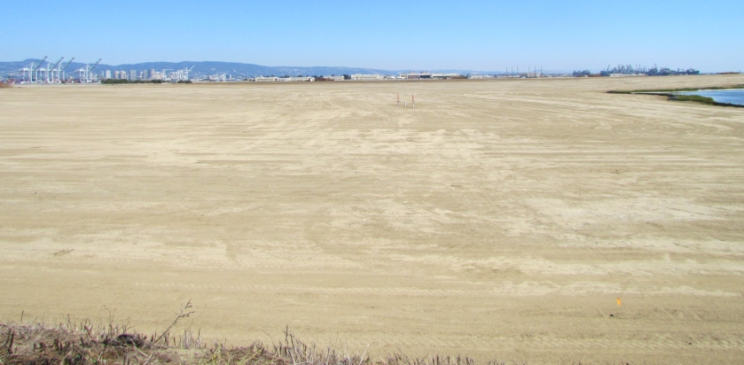 Looking east at partially completed soil cover from the western shoreline of Alameda Point.
