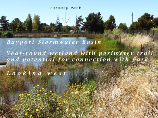 This stormwater basin was constructed by Catellus to serve the Bayport neighborhood.  It remains full year-round due to groundwater being continuously pumped from the special pumping station next to Shinsei Gardens.  Overflow is sent to the Oakland Estuary via another pump station.