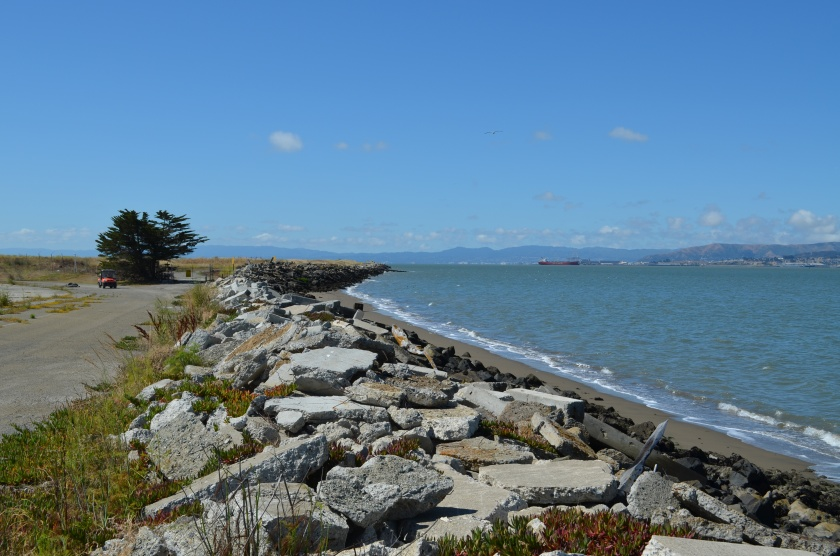 Alameda Point western shoreline where one-acre public access site with parking will be constructed on VA property.  Looking south.