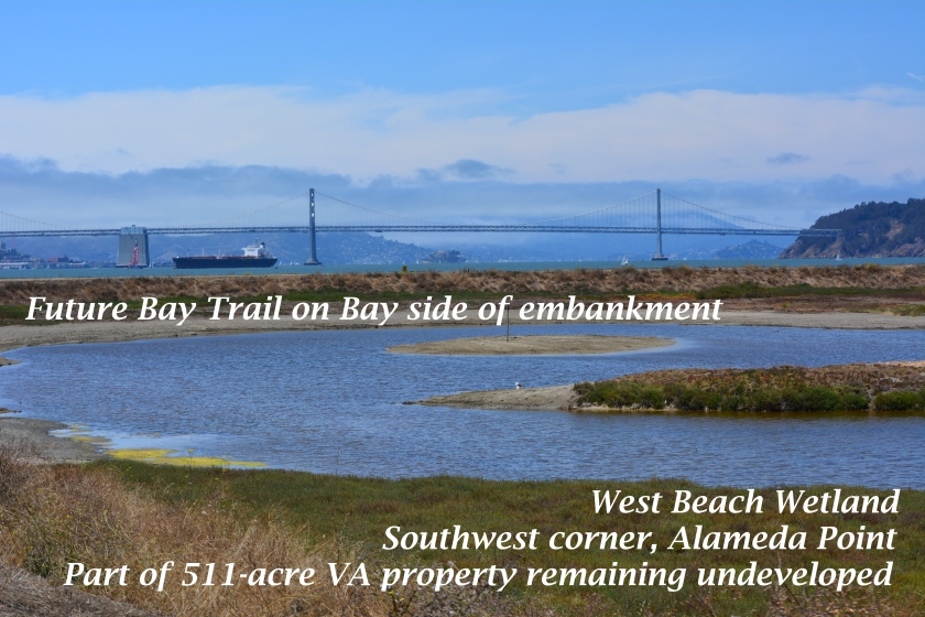 Part of the 511 acres that will be owned by the VA and remain undeveloped.  Current restrictions call for prohibiting Bay Trail access to this area from April 1 to mid-August because of potential threats to least terns that nest about a half-mile to the east.