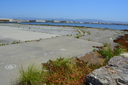 West side of Seaplane Lagoon, looking northeast from shoreline riprap, with lagoon and hangars in background.