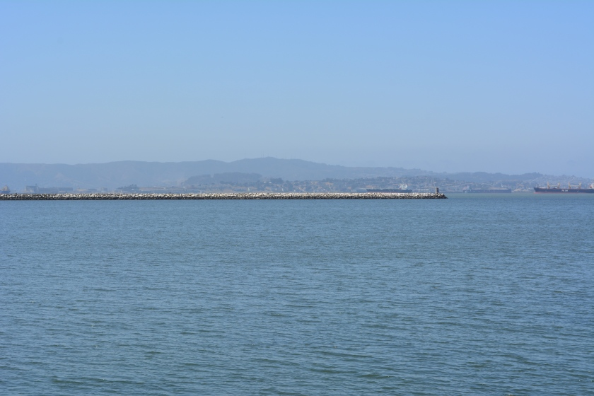 Breakwater Island viewed from shoreline on west side of Seaplane Lagoon.  Breakwater Island is a roosting site for CA Brown Pelicans and other birds.  Island owned by city of Alameda.