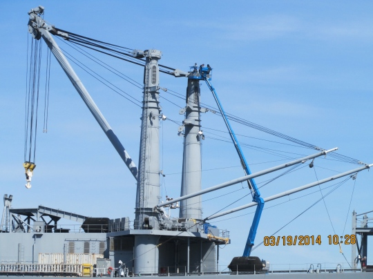 Crew removing osprey nesting material from kingpost on Admiral Callaghan maritime ship at Alameda Point, March 2014.