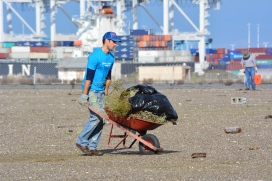 Circlepoint employee removing weeds during December 2014 work party. Port of Oakland in background.