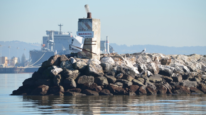 Western tip of Breakwater Island where Fisheries Service said harbor seals should go.  This city-owned property is ill-suited to raising seal pups and not inviting as a resting site, as evidenced by where the seals currently go.