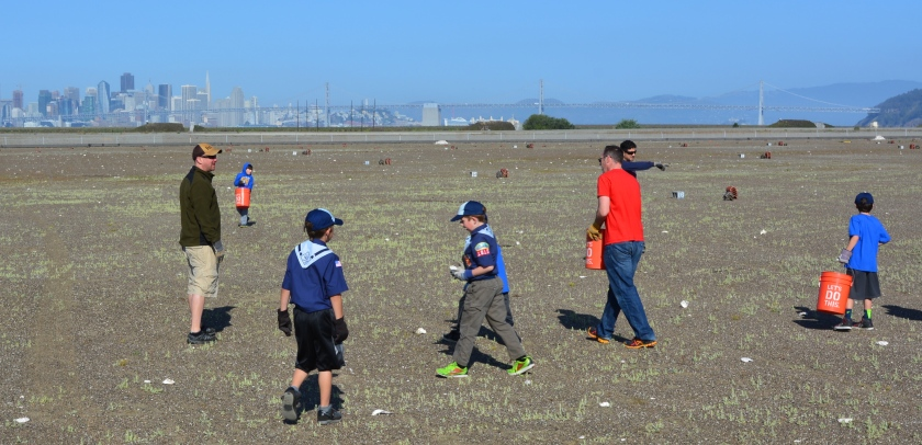 Cub Scouts distributing oyster shells around the nesting area for the least terns.