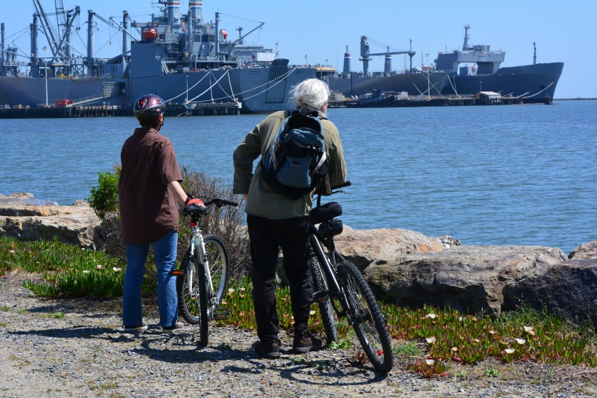 Cyclists on the shoreline