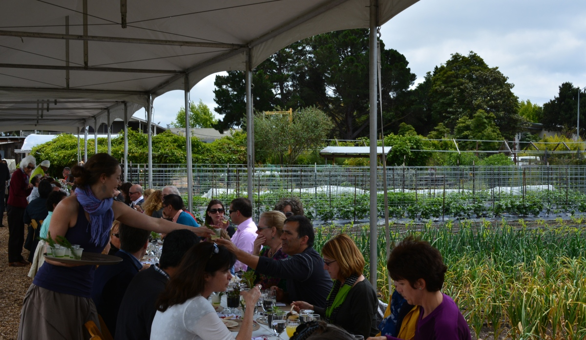 Alameda Point Collaborative hosts luncheon down on the farm