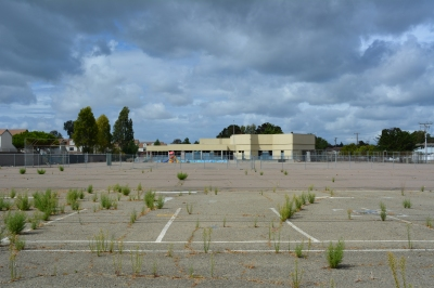 Vacant Island High School site on Singleton Avenue.  Coast Guard housing is to the left.  Singleton Avenue and vacant North Housing area is to the right.  Woodstock Child Development Center is on the far side of the high school.