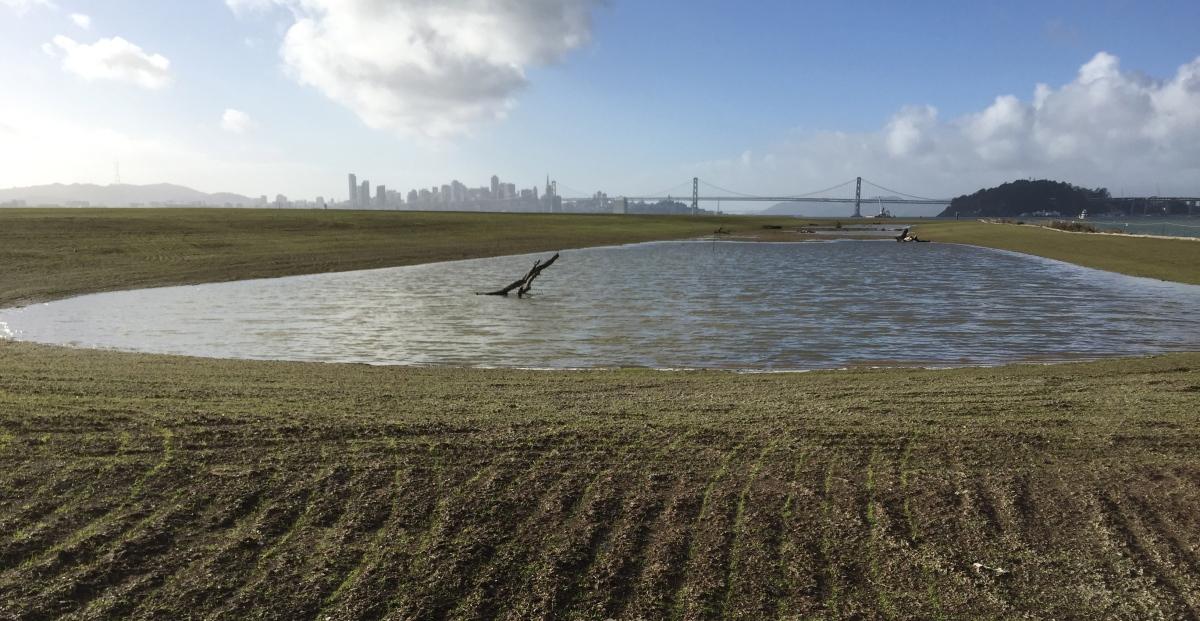 Navy adds a wetland andgrassland