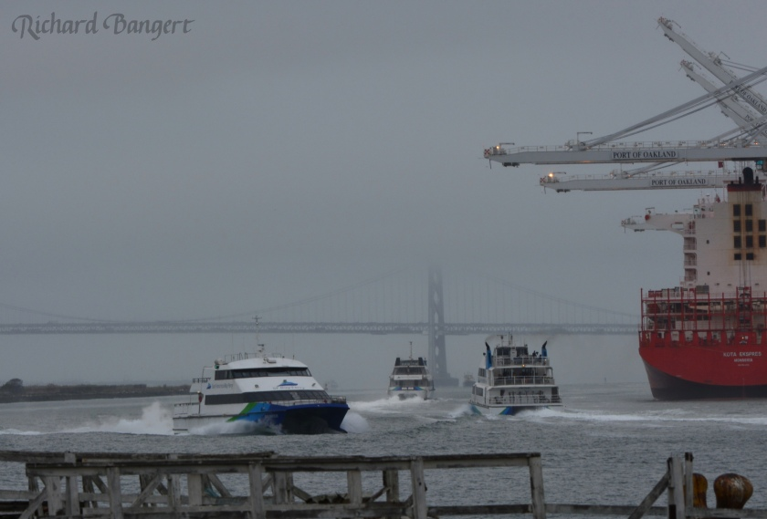 WETA ferries operating on Oakland Estuary during weekday morning commute time.