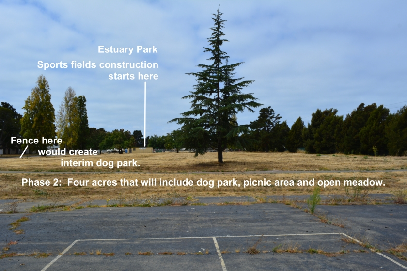 Estuary Park Phase 2 area