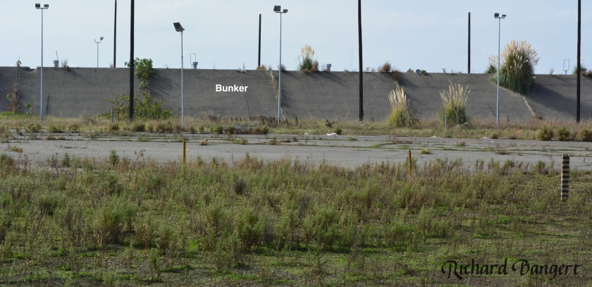 bunker-wpavement