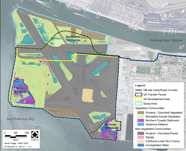 Map showing wetlands impacted by VA project. Runway Wetland at lower right could be upgraded and expanded as mitigation for impacts of the project.