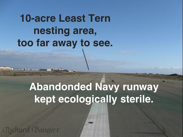 sterile-runway-png