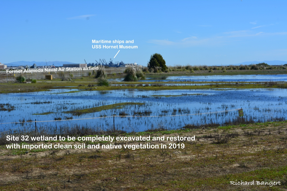 Views of wetland cleanup area to be dug up, upgraded in 2019